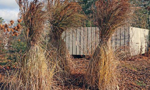 tie-up-grasses